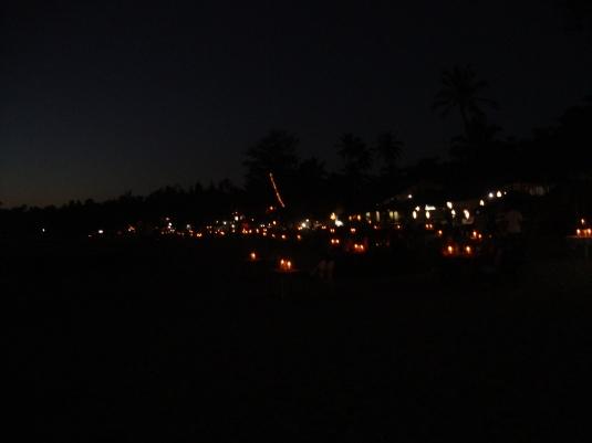 Goa- 2014